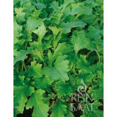 Namenia (Brassica rapa var. rapa)